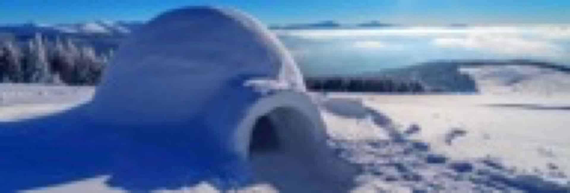 stage survie hivernal en igloo