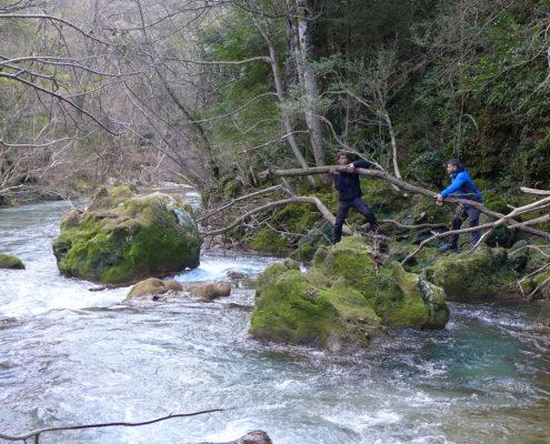 Stage nature et survie dans les Cévennes