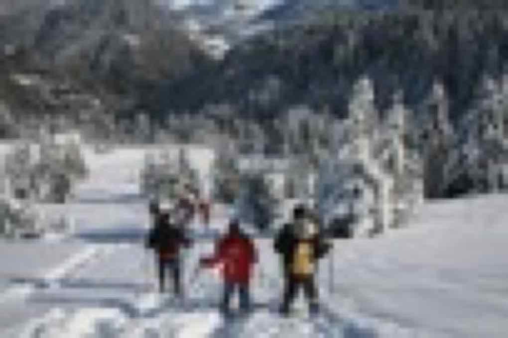 Stage hivernal raquette à neige.